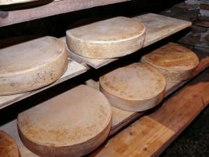 cheese-1097512_960_720